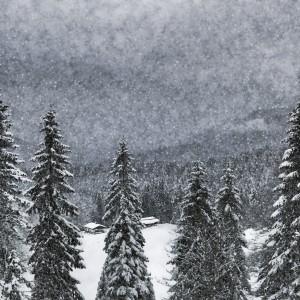 Bavarian Winter's Tale I by Melanie Viola