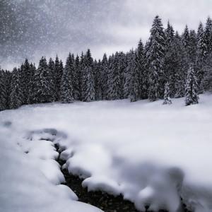 Bavarian Winter's Tale VII by Melanie Viola