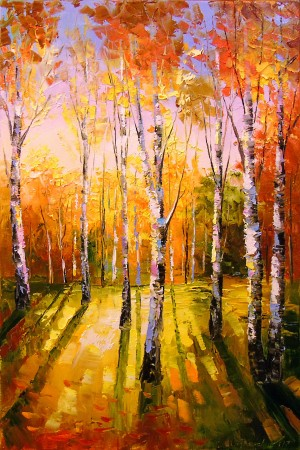 Birches in sunlight by Olha Darchuk
