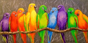 Parrots friends by Olha Darchuk