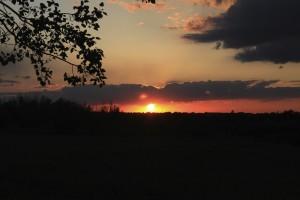 Sun Set by Robert Stewart