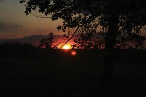 Sunset by Robert Stewart