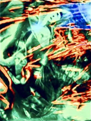 Jungle Tapestry  by Soul Sparkles