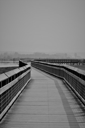 Boardwalk by Stan Bann