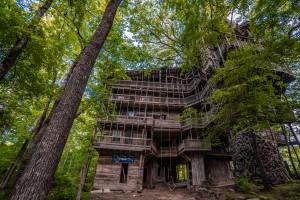 World Largest Abandoned Tree House by Steve Ronin