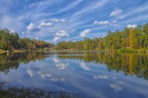 A Sunny Fall Reflection by Thomas Vasas