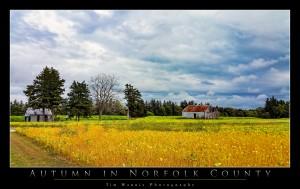 Norfolk County Farmland by Tim Warris Photography