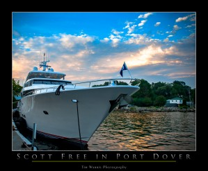 Scott Free by Tim Warris Photography