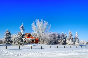 Red house surrounded by white trees and snow on blue sky background by Viktor Birkus