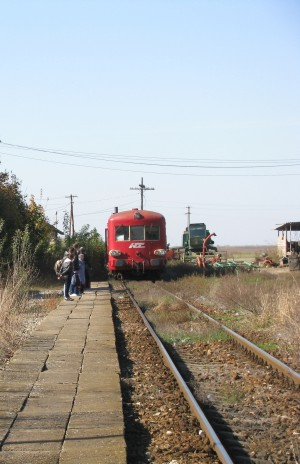 Train arriving in Varias train station near the border between Romania and Hungary by Vlad Radulian