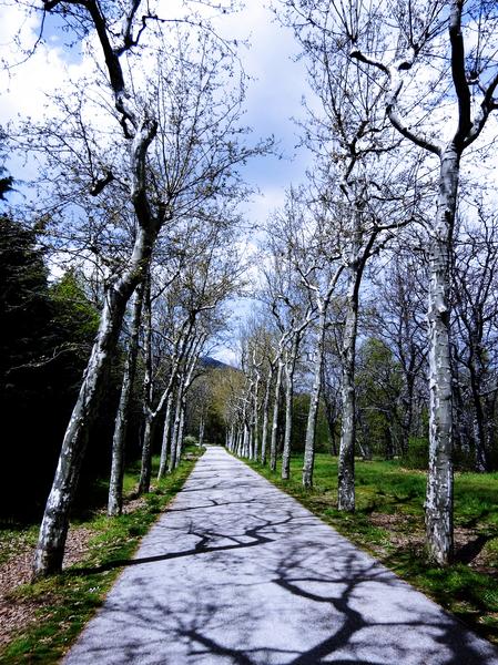 Casita del Principe 6 of 7 - Park and Gardens - The Royal Monastery of San Lorenzo de El Escorial - Madrid Spain Digital Download