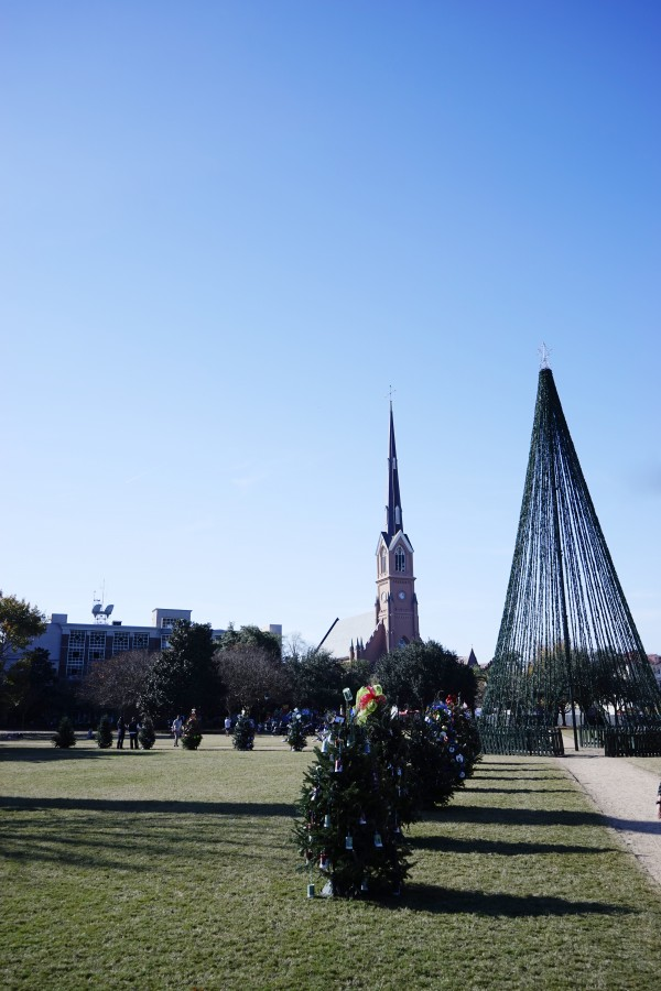 Snapshot in Time Charleston 5 of 5 Digital Download