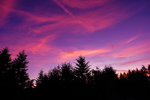 Summer Sunset Pacific Northwest United States Digital Download