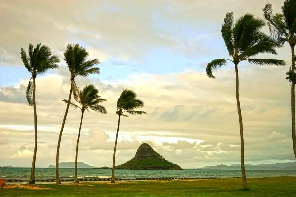 The Island of Mokoli  i from Oahu at Sunset Digital Download