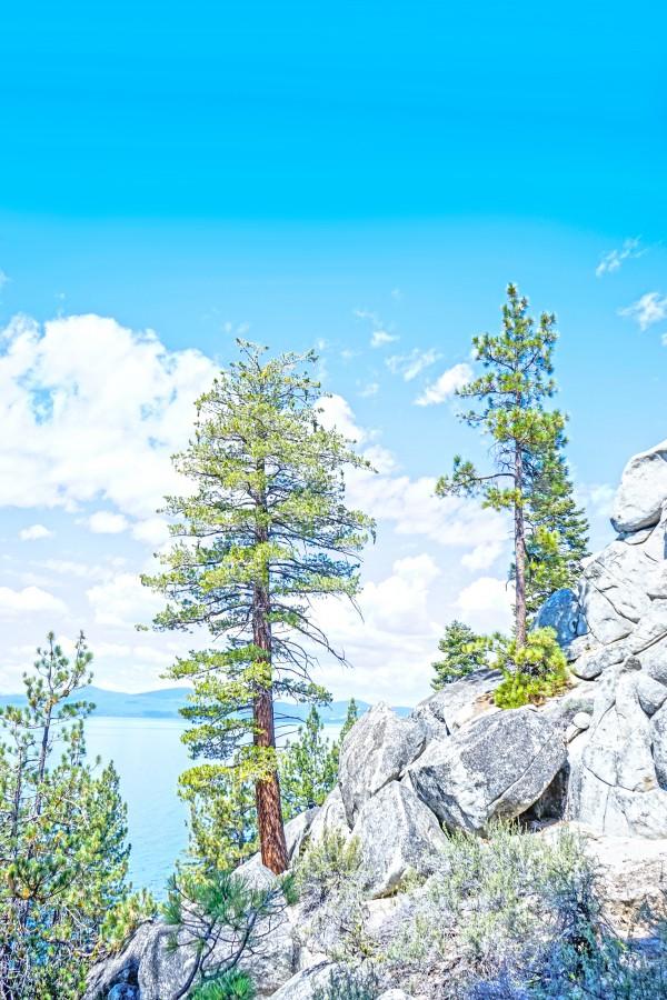 Top of the Mountain California  Digital Download
