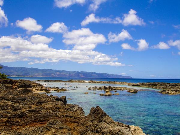 Brilliant Blue Skies Over Hanauma Bay Hawaii Digital Download
