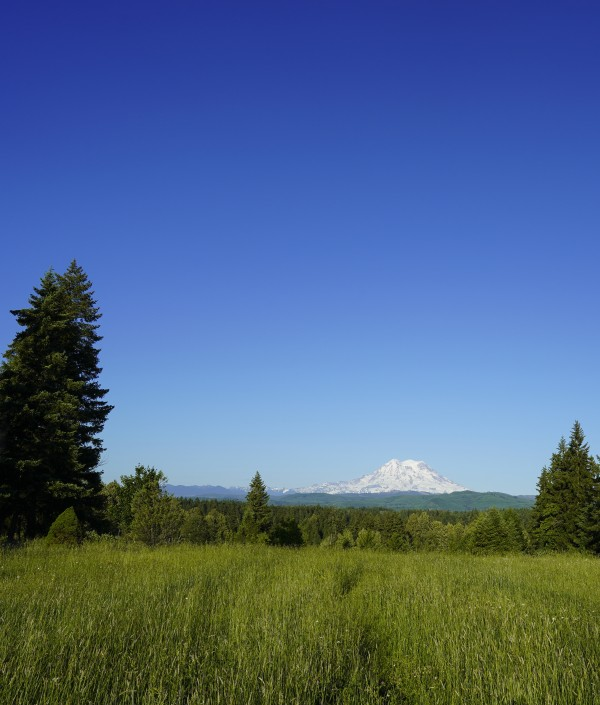 Mount Rainier and the Cascades Mountains Pacific Northwest Washington by 360 Studios