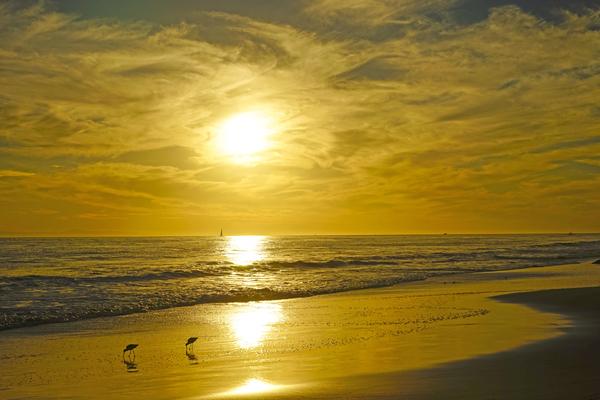 Stunning Sunset over Catalina Island   Newport Beach California by 360 Studios