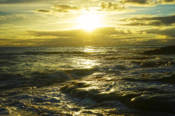 Sunlight and Shadows Play in the Waters at the Bay Digital Download