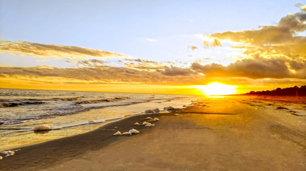 The Summer Sun Sets in the Carolinas Digital Download