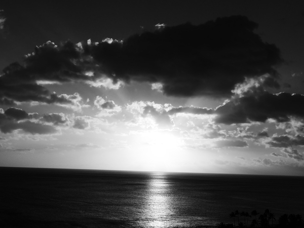 Tropical Sunset Black and White by 360 Studios