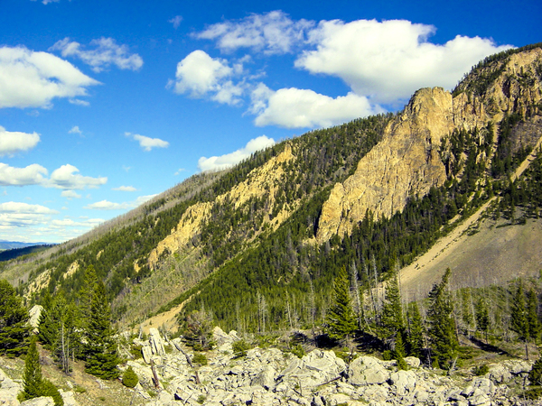 Vintage The Mountains of the Yellowstone Wyoming by 360 Studios