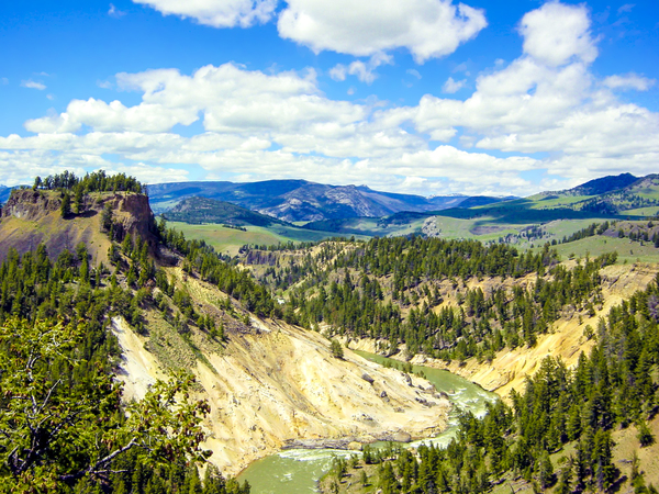 Vintage Wild Country   Yellowstone National Park in the United States by 360 Studios