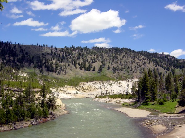 Yellowstone National Park 3 Digital Download