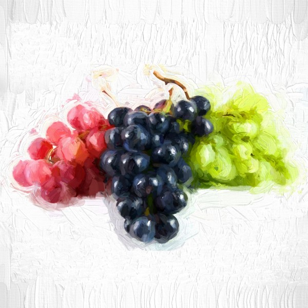 Grapes by A WYN CHANCE