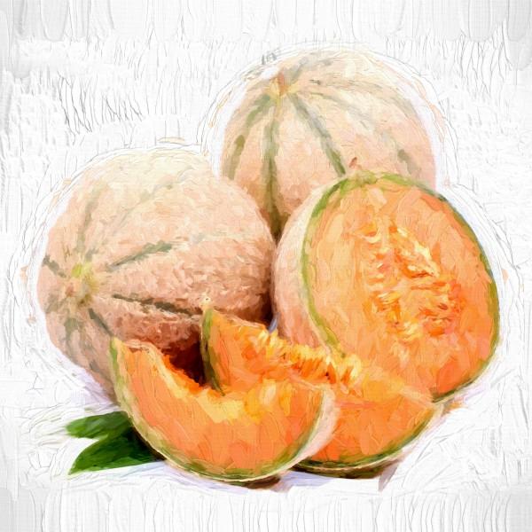 Melon by A WYN CHANCE