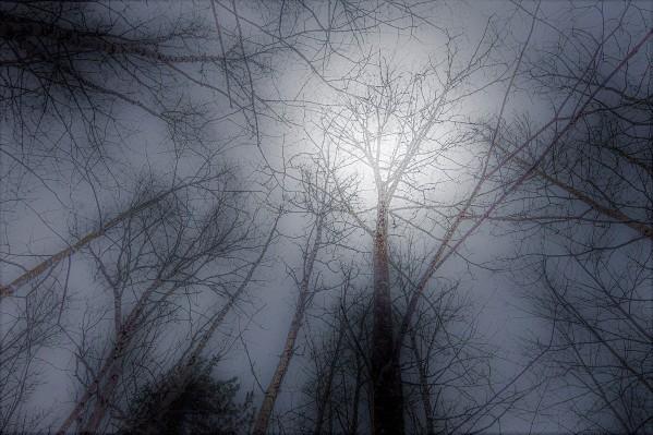 Espoir by Anniestpierreartistephotographe