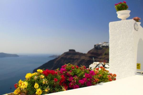 Santorini landscape-  Red Flowers by Bentivoglio Photography