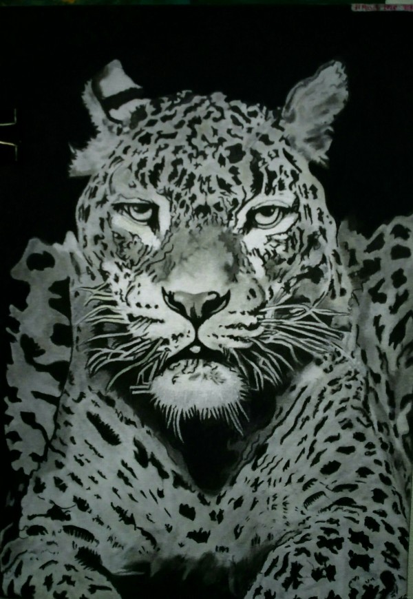 Leopard....☮ by Art Piece