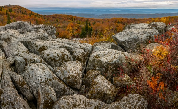 Bear Rocks Overlook apmi 1793 by Artistic Photography