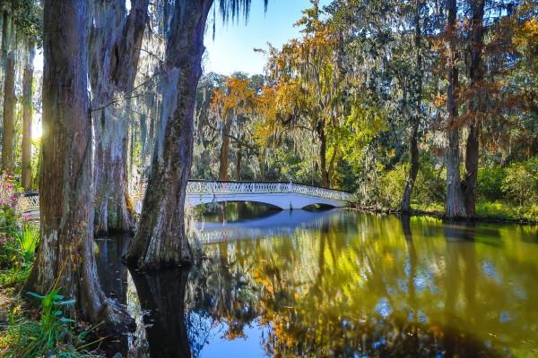 Bridge ap 2079 by Artistic Photography