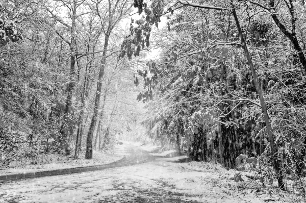 Country Road ap 1575 B&W by Artistic Photography