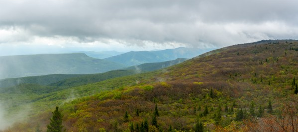 Dolly Sods Wilderness apmi 1681 by Artistic Photography