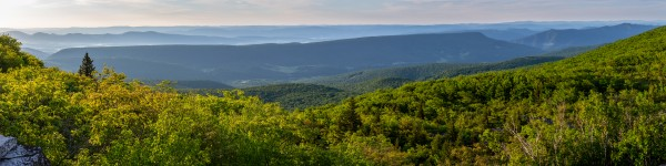 Dolly Sods at Sunrise apmi 1713 by Artistic Photography