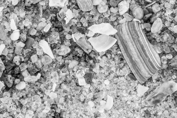 Sand & Shells ap 1843 B&W by Artistic Photography