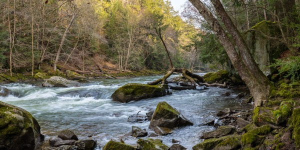 Slippery Rock Creek apmi 1752 by Artistic Photography