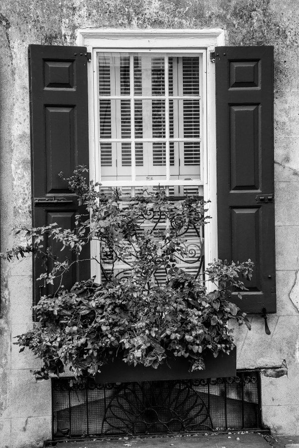 Window ap 2091 B&W by Artistic Photography