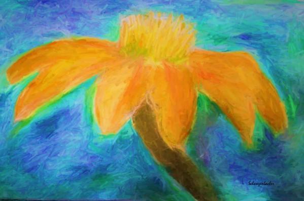 Orange flower by Aurelia Schanzenbacher Sisters Fine Arts