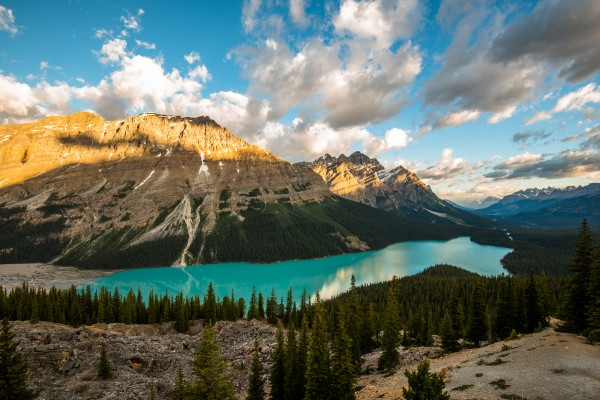 Peyto Lake by Aurelio Matthew Leal