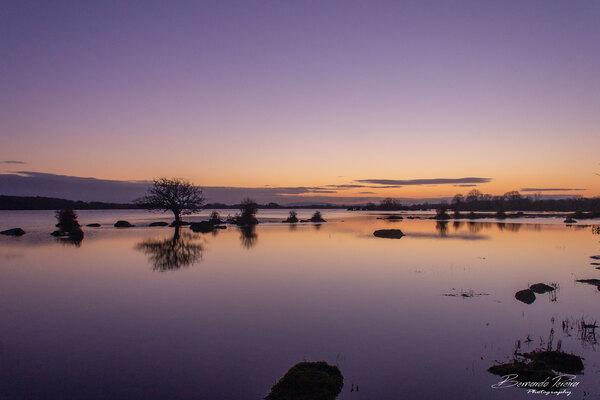 Pink Sunset Ireland by BDLPhotography