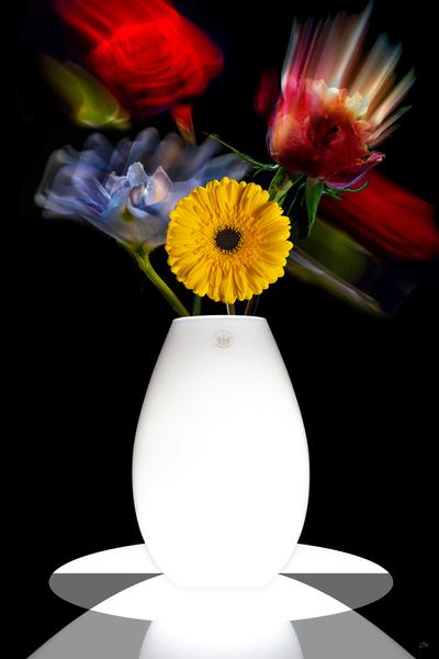 FLUID FLOWERS I by BILAS
