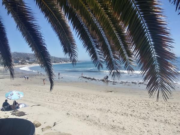 inbound4383642754042874801 by Beach Creations photographer