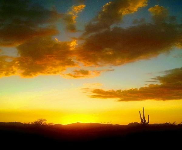 Desert Sunset by Beholders Eyes