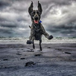 Coming at ya! by Ben Sheehan