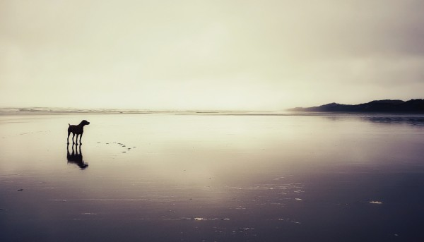 Heavens Not Too Far Away. by Ben Sheehan