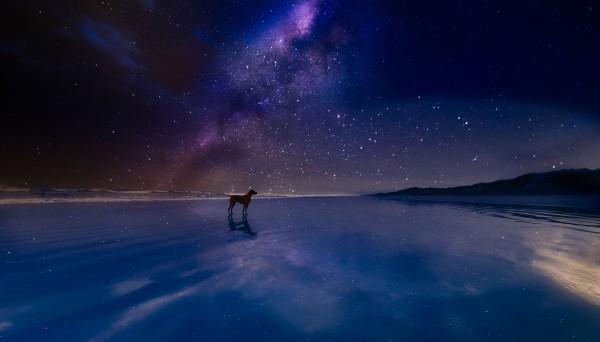 Lucky Star. by Ben Sheehan